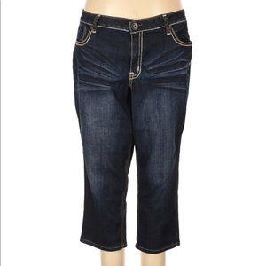 Zanadi Jeans Straight Leg Dark Wash 22W